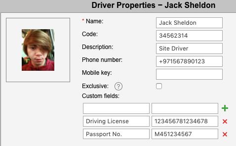 driver properties dubaigps.com
